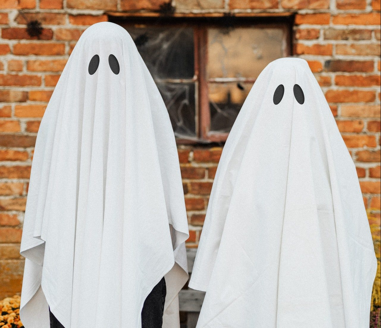 wordpress vs ghost features